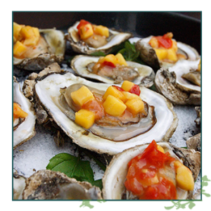 Summer Specials Oysters